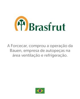 31_Brasfrut
