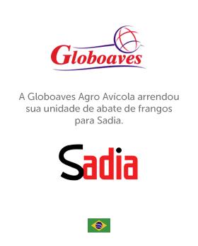 37_Globo